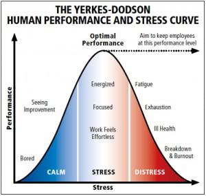 Stress Distribution